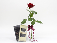 Single rose & chocolate