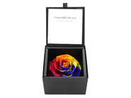 Diamond Rose・Rainbow(Preserved Flower)